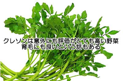 クレソンは特に栄養価が高い野菜と評価される|育毛の為にもおすすめ