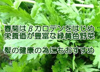 春菊は栄養価が高く体に余計な成分が全然含まれていないので育毛にも役立つ食べ物であるといえる