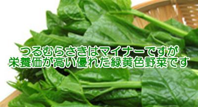 ツルムラサキはマイナーだが栄養価が高く育毛にも貢献する緑黄色野菜
