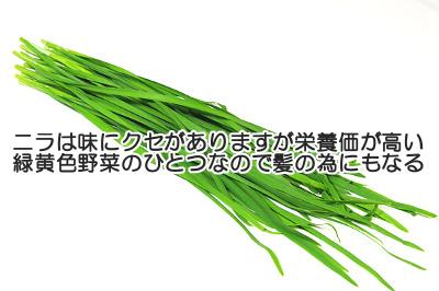 ニラは定番の緑黄色野菜のひとつで正しく食べれば育毛にも貢献する