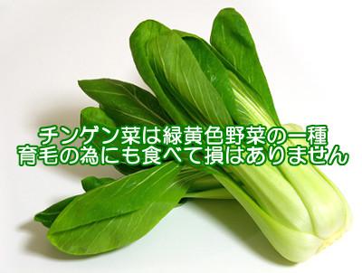 チンゲン菜は栄養素が豊富な緑黄色野菜なので髪の健康にも良い