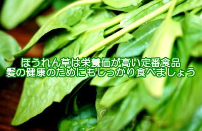 ほうれん草は栄養価が高く食べやすいポピュラーな緑黄色野菜ですので育毛体質を取り戻すためにも是非食べてほしい食べ物のひとつです