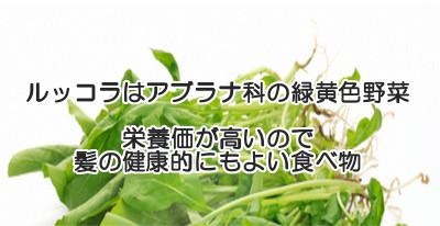 ルッコラはアブラナ科の緑黄色野菜で栄養価がとても高い特長があり育毛のためにも旬は特に食べてほしい食べ物のひとつです