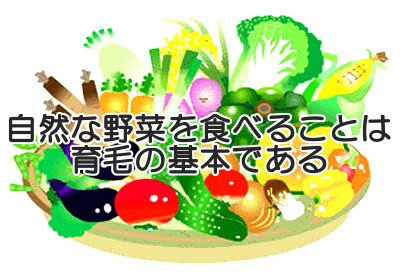 野菜は栄養豊富で消化に負担をかけない重要な食べ物なので育毛体質を作り上げる上で絶対的に必要となります
