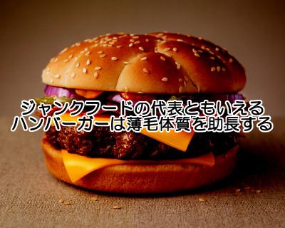 ハンバーガーは不健康要素満載でジャンクフードの代表格ともいえる存在ですのでハゲ体質を作るには格好の食べ物です