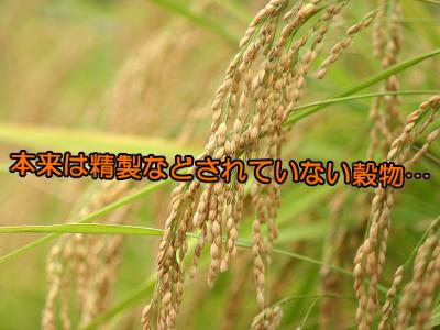 精白された穀類は体の健康上とても危険な代物です。血糖値を急上昇させ体の糖化を促進し育毛のブレーキともなります。