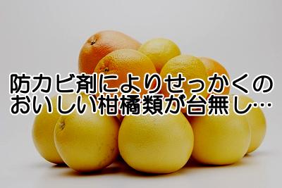 柑橘類に使用される防カビ剤は体に悪いものでありながら政治的圧力の影響で堂々と輸入されるようになってしまいました。