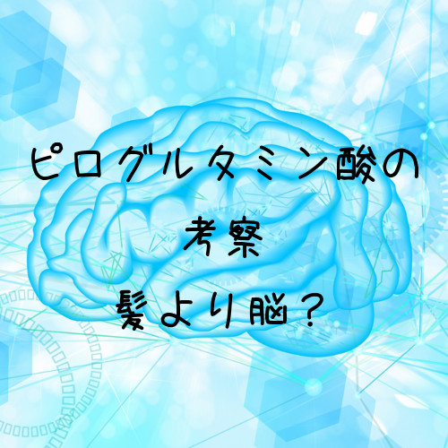 ピログルタミン酸は髪の毛より脳との関係が深そうなアミノ酸