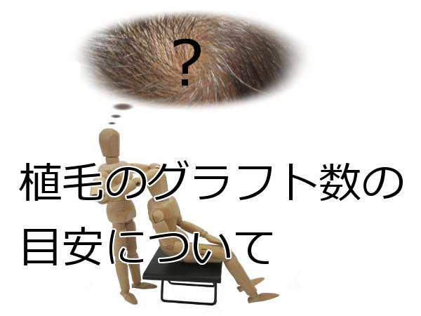 植毛のグラフトがどのくらい必要かの目安を知ることは大事